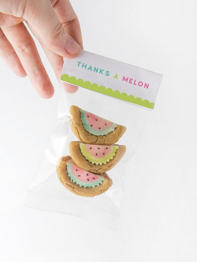 Watermelon Party Favor Treat Bags Thanks A Melon