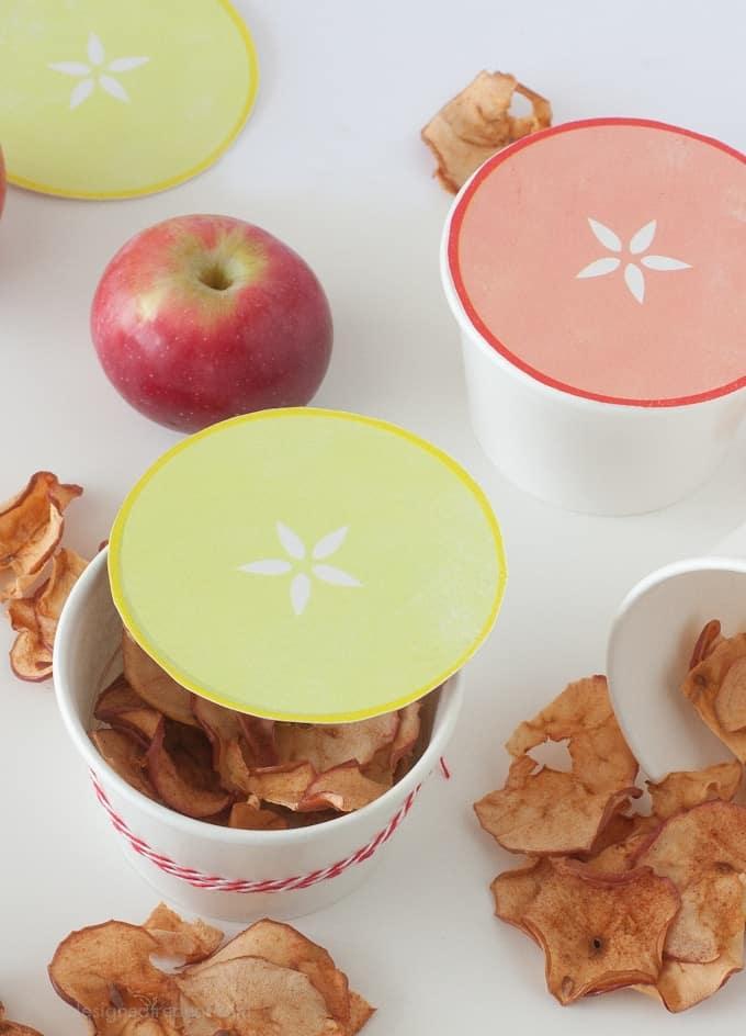 Apple Gift Idea for Teachers