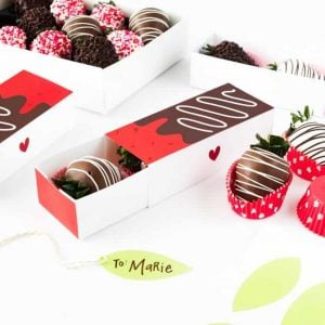 Chocolate Covered Strawberry Valentine's Day Gift Boxes