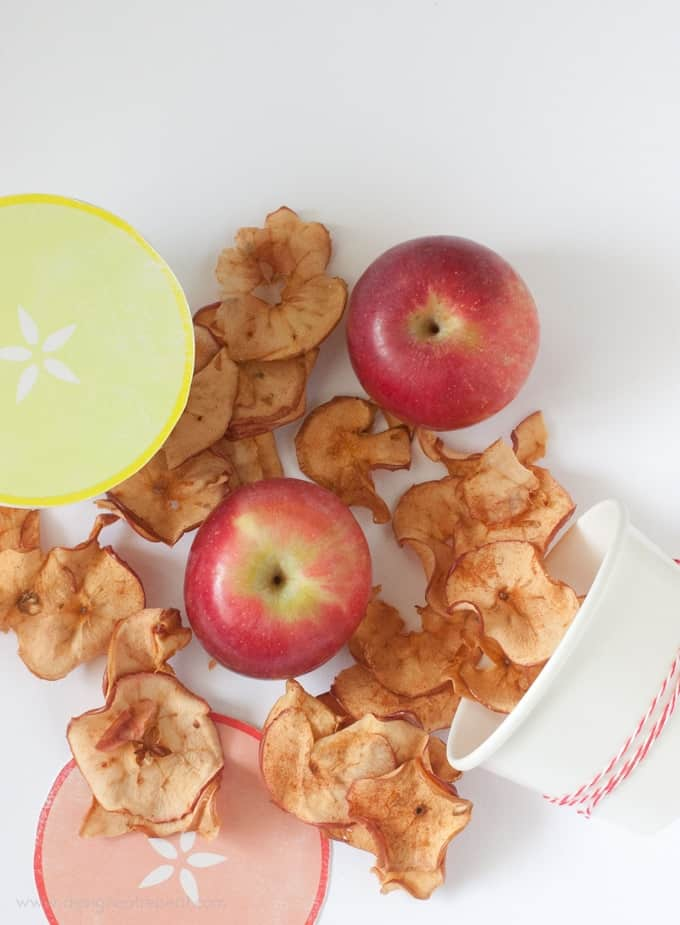 Cinnamon Apple Chips with Cute packaging idea!