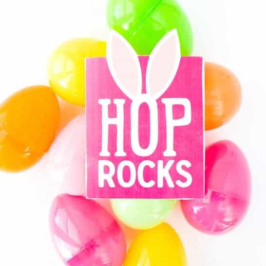 Hop Rocks Free Easter Printable Pouch