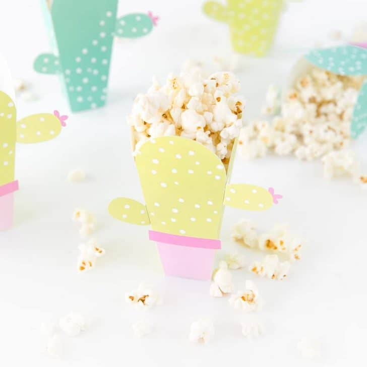 Printable Cactus Popcorn Box Template