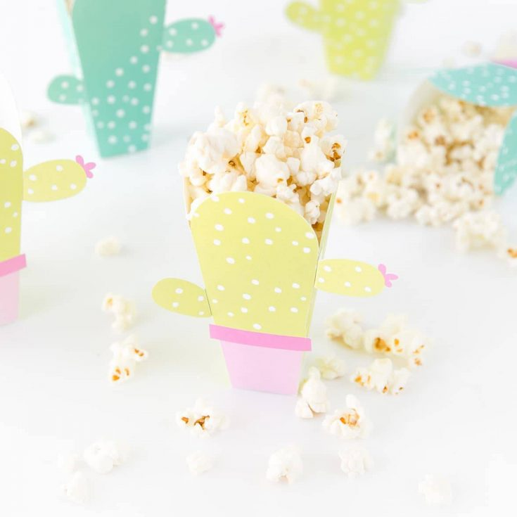 How To Make Printable Cactus Popcorn Box Templates