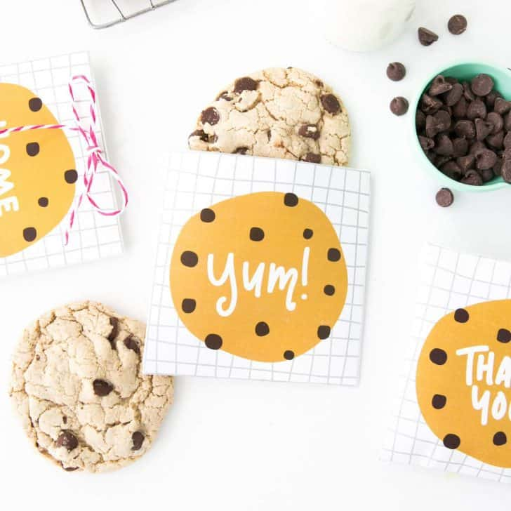 Printable Chocolate Chip Cookie Bags