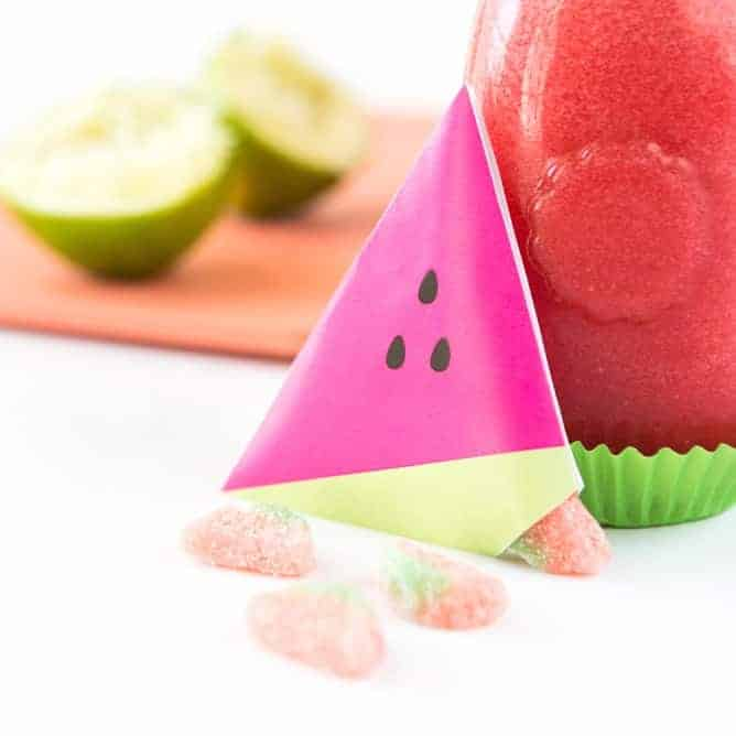 Watermelon Party Favor Pouches